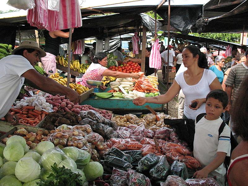 Costa Rica 7.4.08 010